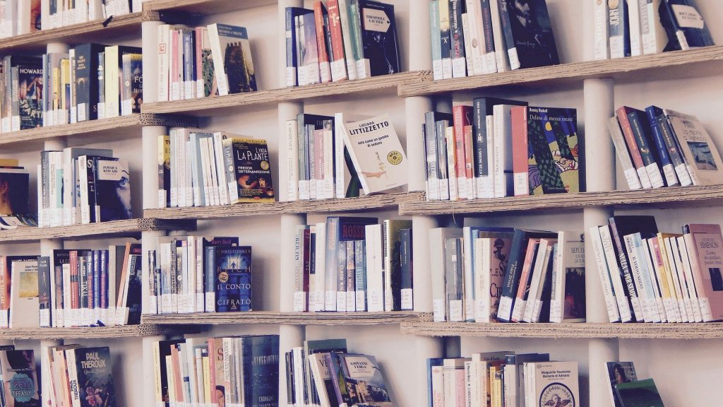 mejores estanterias para organizar libros